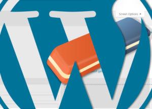 Hide Screen Options In WordPress
